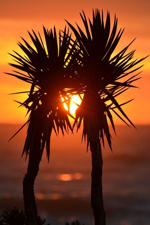 coucher de soleil conseils photo
