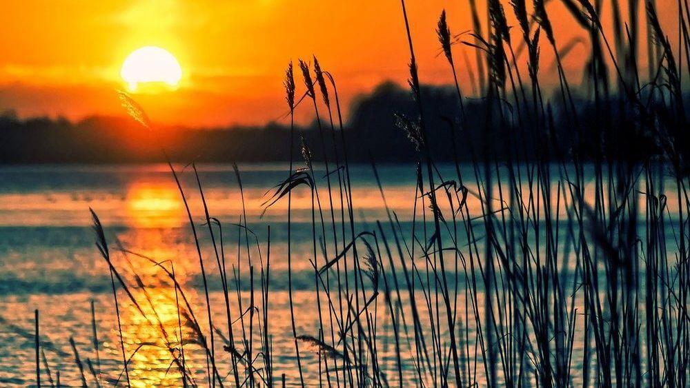 flou et coucher de soleil