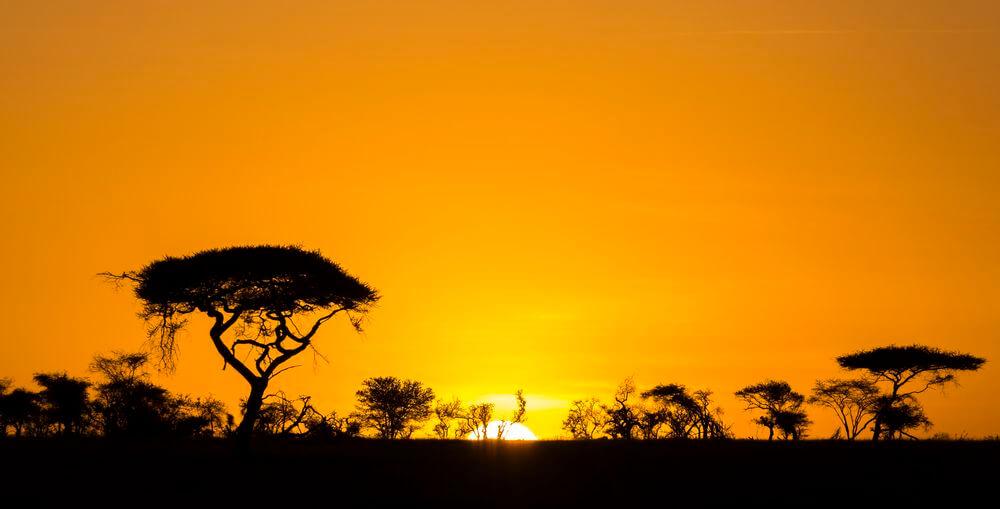 le sujet en coucher de soleil