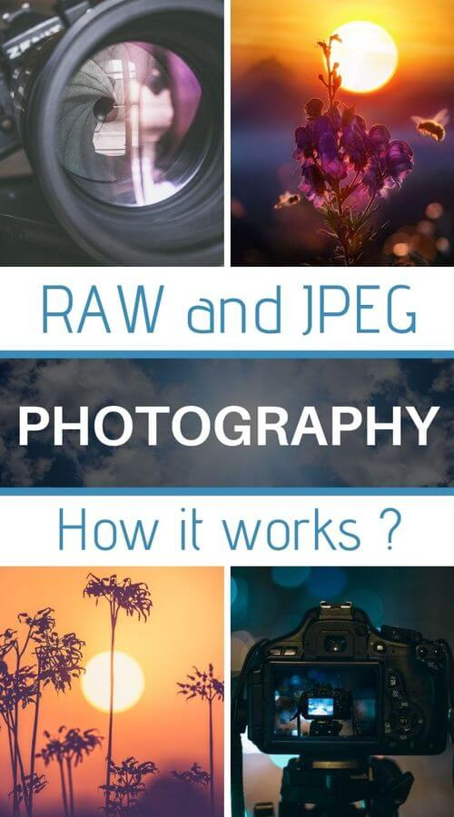 jpeg and raw formats