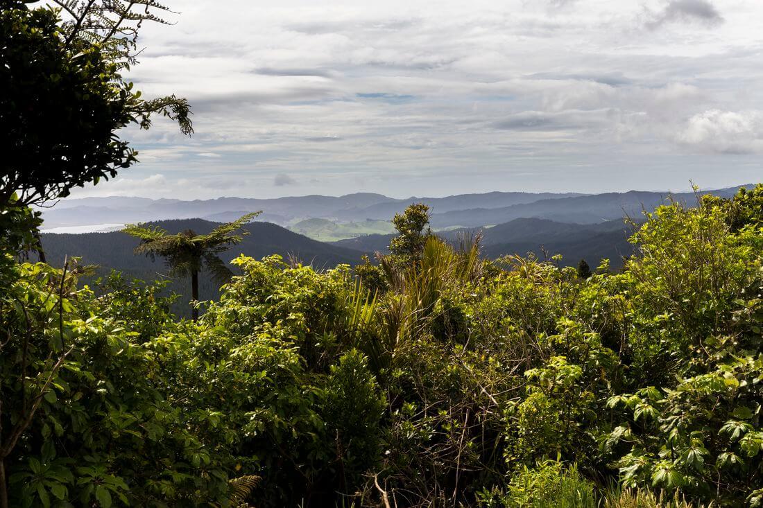 paysages du coromandel