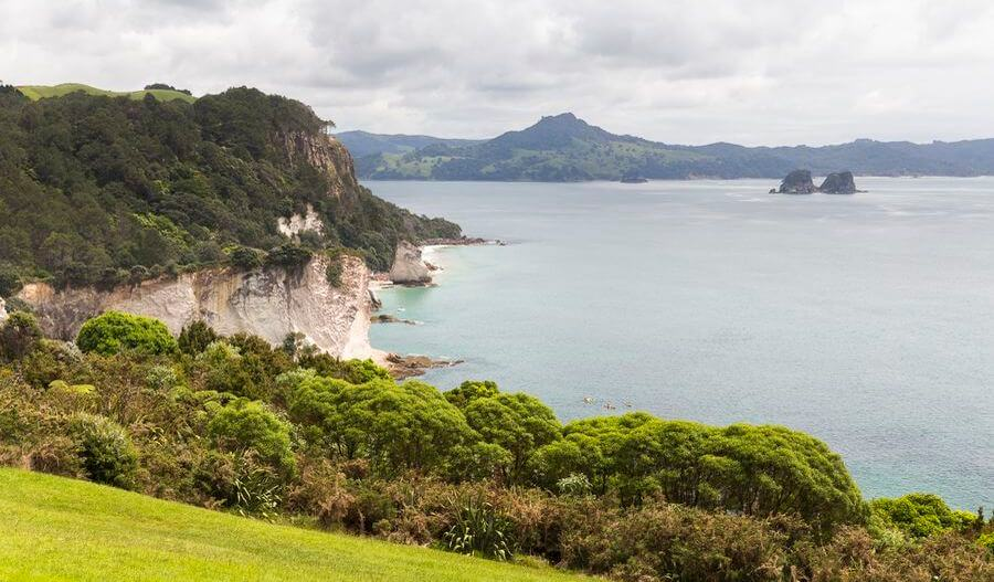 paysage cathedral cove coromandel