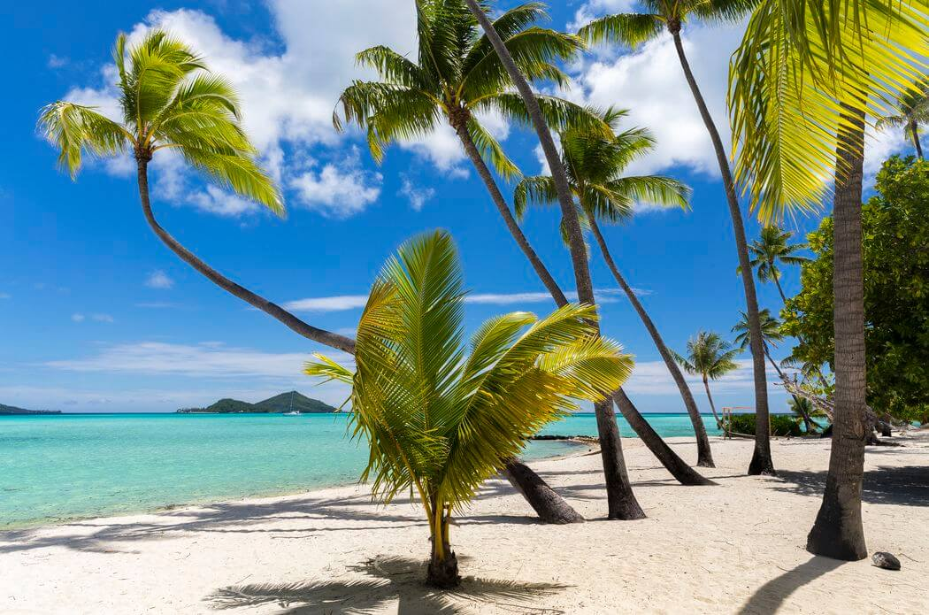 bora bora and leewards islands