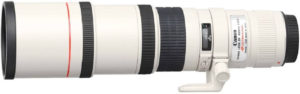 canon lens for wildlife photography