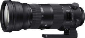 sigma lens zoom for wildilfe photography
