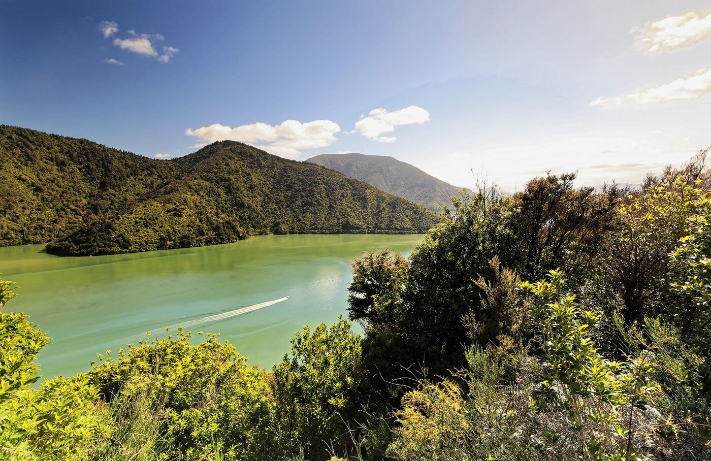 a perfect road trip in new zealand