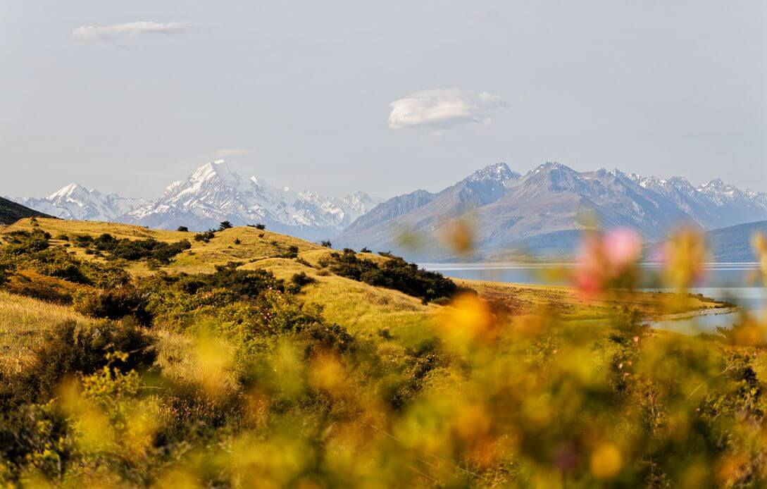 superb views of mount cook during its road trip