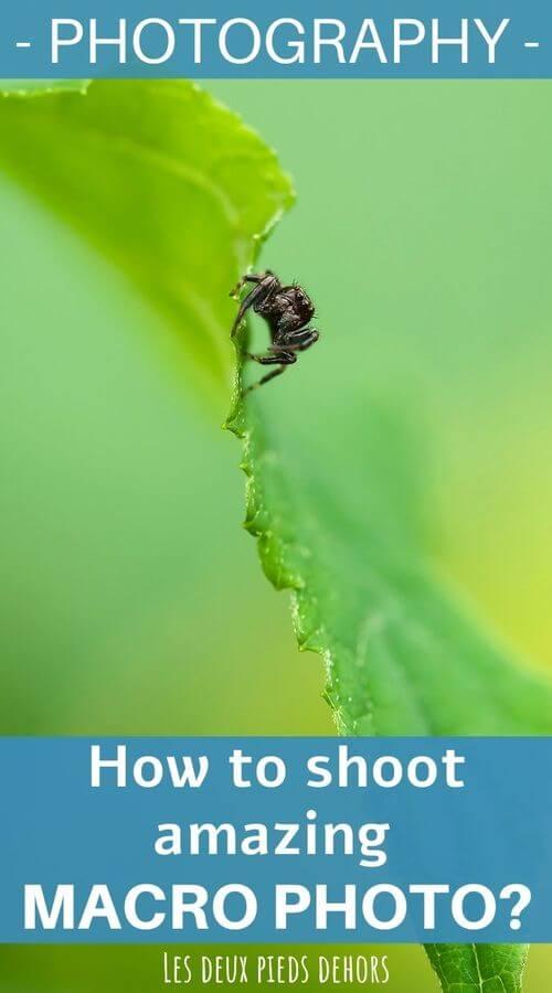macro photo tips