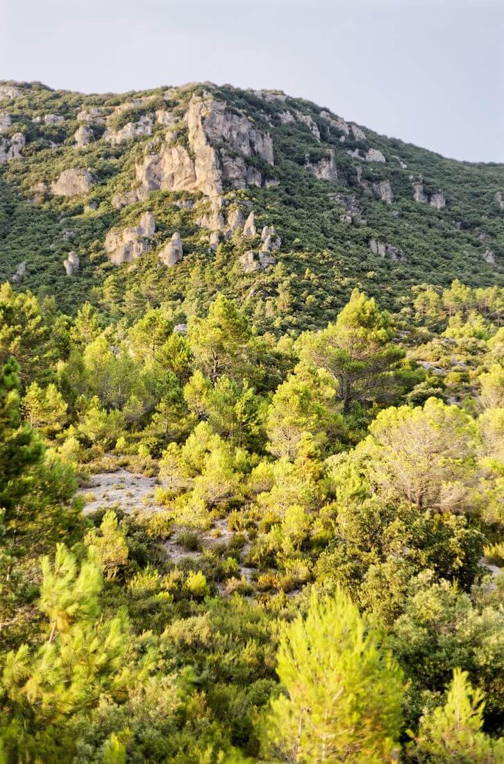 montagne dans le cirque de mourèze