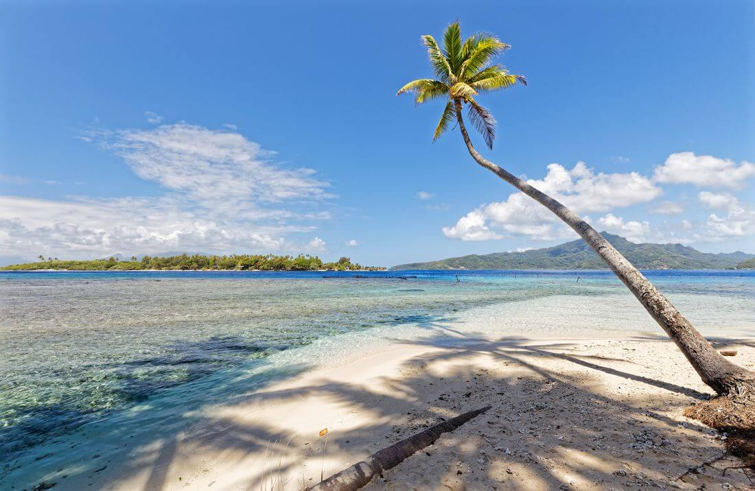 plage sur le motu polynésie