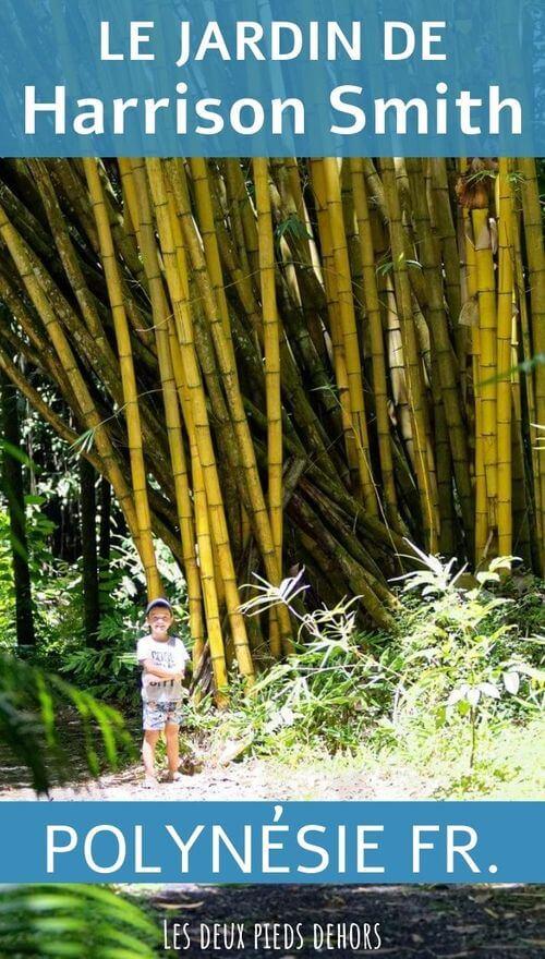 Photo dans le Jarin botanique de Tahiti