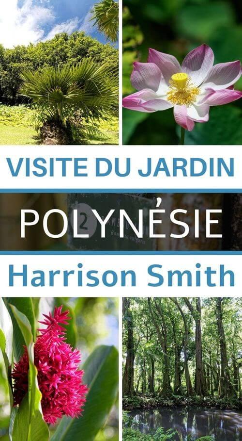 Découverte du Jardin Harrison smith