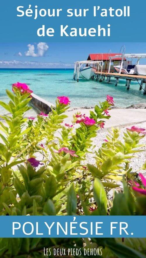 île polynesienne