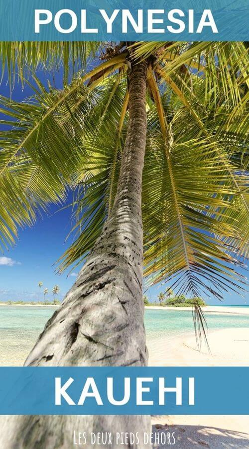 Stay on the kauehi atoll in polynesia