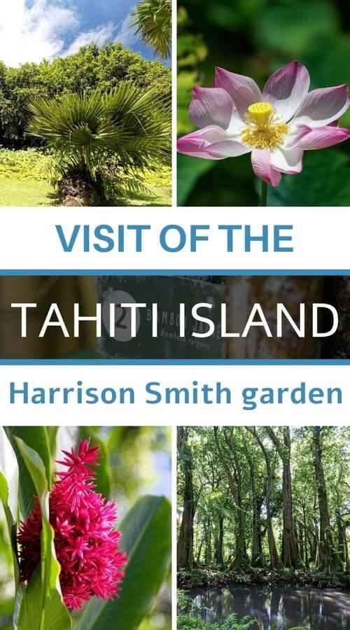 Harrison smith garden
