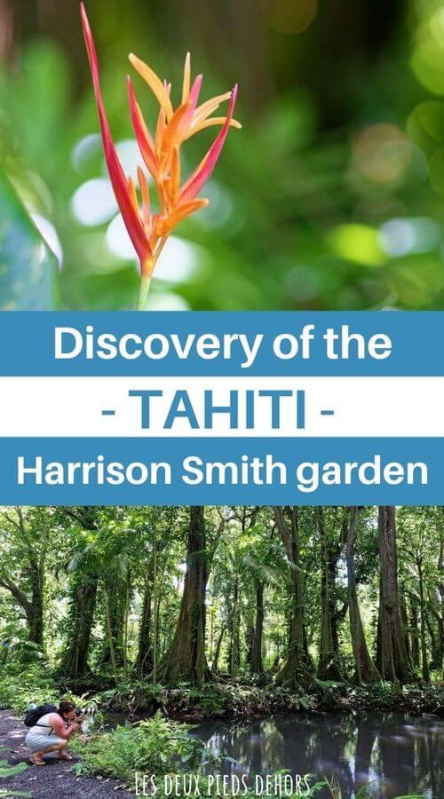Stroll in the garden of harrison smith
