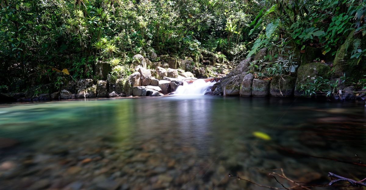bassin du bas à la cascade